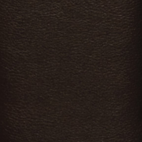 Dark Brown Select Leather LB651378