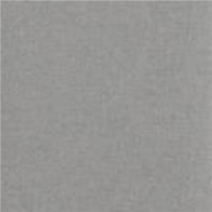Light Gray Light Gray VV-#40 PL0685