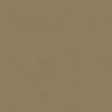 Wilma Taupe LD963234