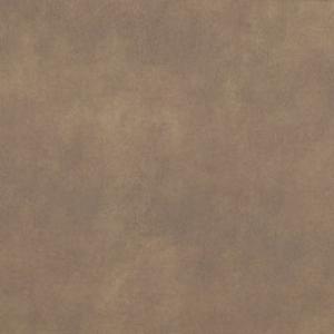 Gran Torino Acorn RD103768
