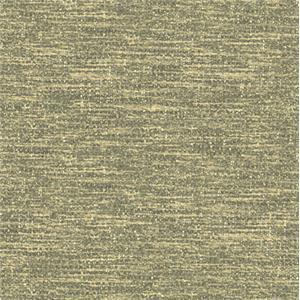 Gray Body Fabric 4146-31