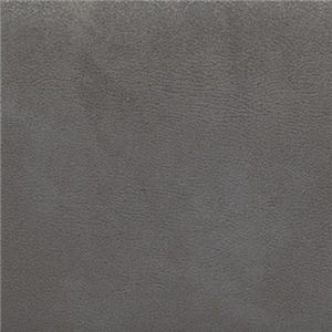 Gray Austere-Gray