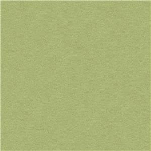Gaucho Verde