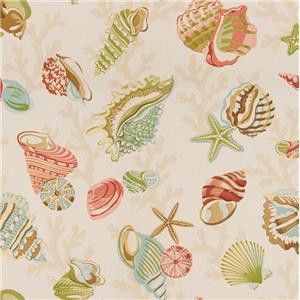 Coral Beach Shell