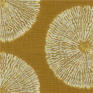 Alinga Gold