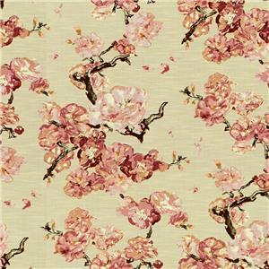 Kobe Cherry Blossom