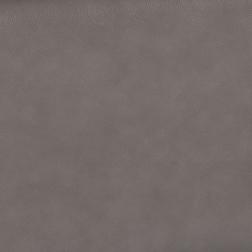 Gray  3855 Gray