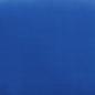 Blue FMS-DM156-31