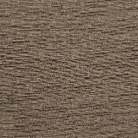 Denali Fossil B157774