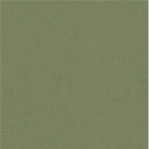 Olive 0185-21