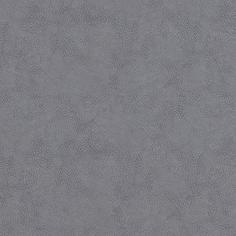 Dax Grey Dax Grey