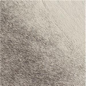 Grey Hair on Hide 670