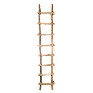 """A & B Home Occasional Accents 71"""" Birch Ladder"""