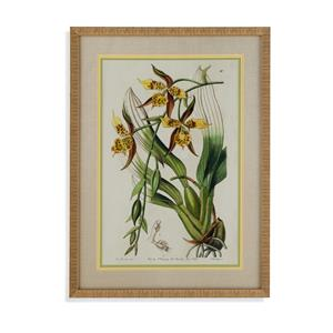 Bassett Mirror Old World Spring Orchid I