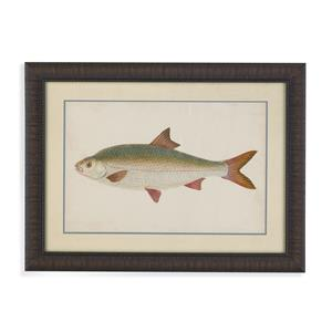 Bassett Mirror Old World Donovan Antique Fish II