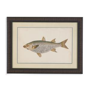 Bassett Mirror Old World Donovan Antique Fish IV