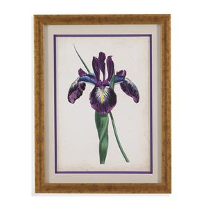 Bassett Mirror Old World Curtis Iris V
