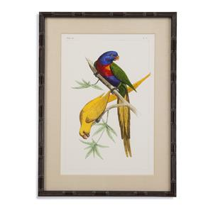 Bassett Mirror Pan Pacific Lemaire Parrots IV