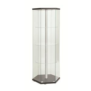 Coaster Accent Cabinets Curio Cabinet