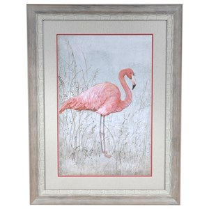 American Flamingo 1