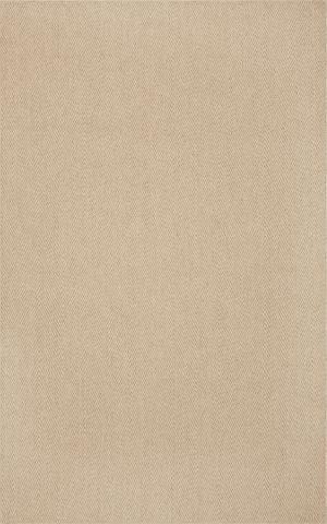 8X10 Linen Sisal Rug