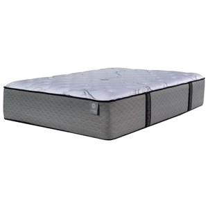 "Queen 16"" Plush Mattress"