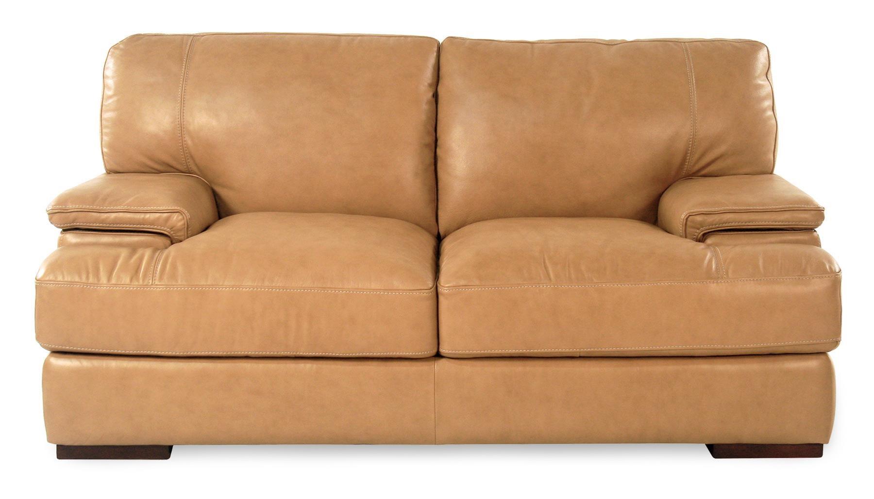 Loft Leather Nassau Leather Loveseat - Item Number: 10027-30-NASSAUTAN