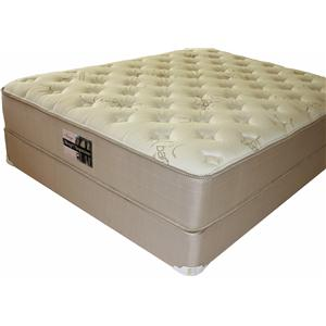 Golden Mattress Company Image Queen Visco Tech Mattress