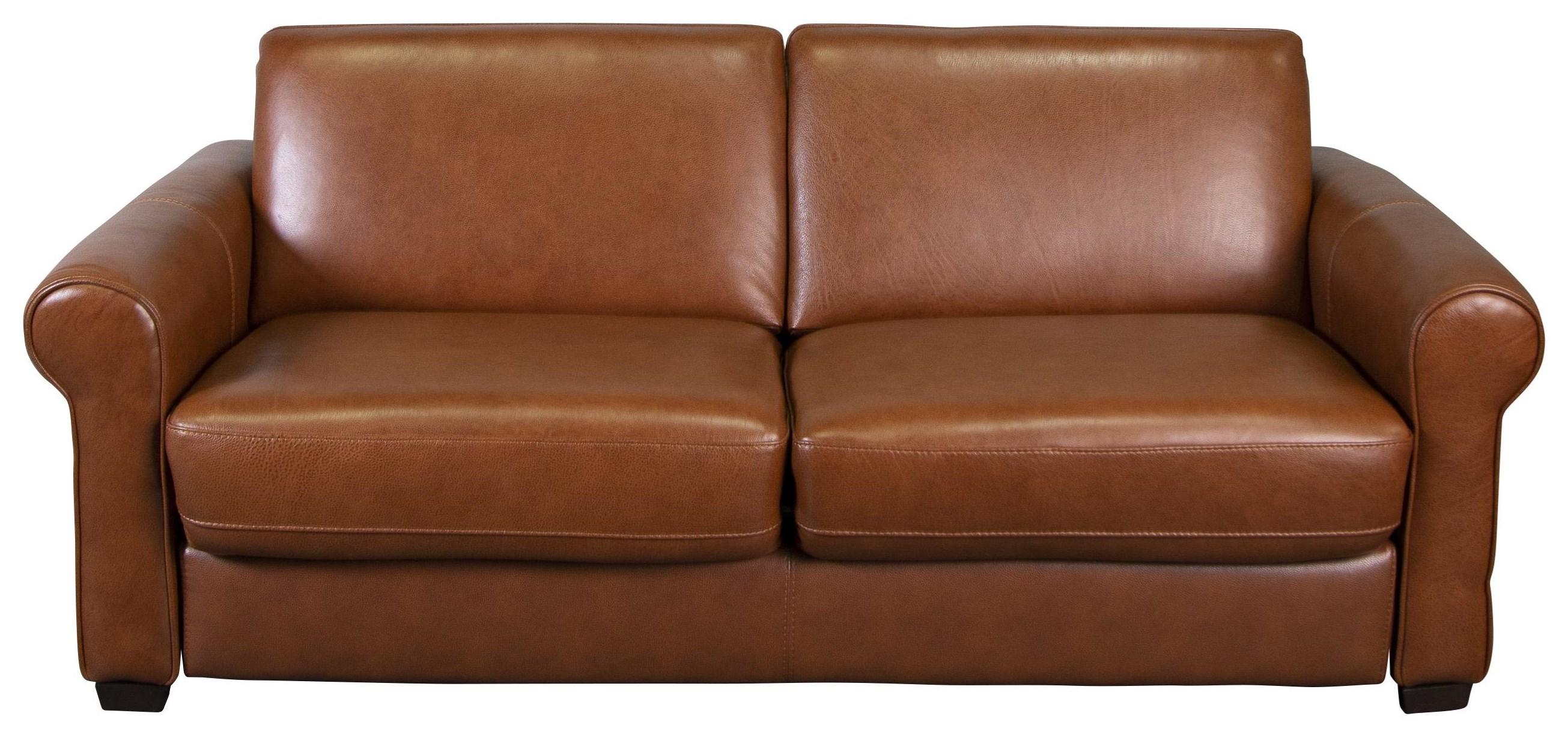 Arley 100%  Leather Sofa Sleeper