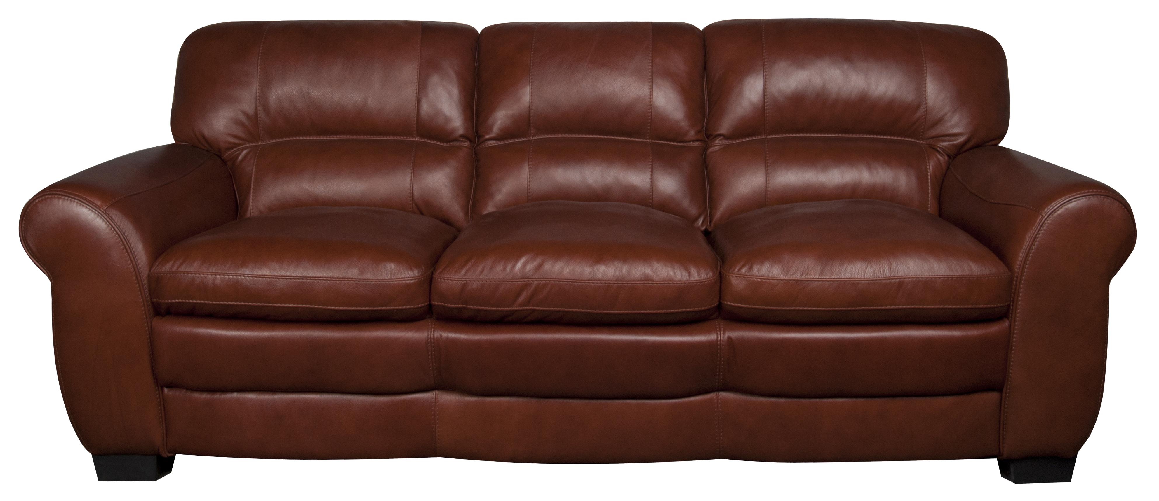 Morris Home Furnishings Ellis Ellis 100% Leather Sofa - Item Number: 846234590