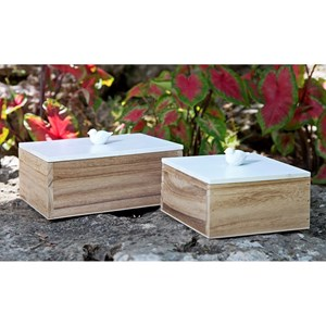 IMAX Worldwide Home Boxes, Bowls, and Balls Mochrie Lidded Boxes - Set of 2