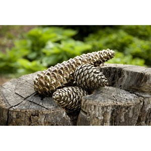 IMAX Worldwide Home Decorative Figurines Taran Pinecone Decor - Set of 3