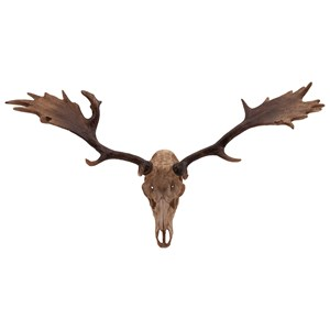 IMAX Worldwide Home Trisha Yearwood Cowboy Moose Mount