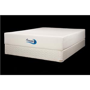 Jamison Bedding Oceania Queen Oceania Visco Foam Mattress