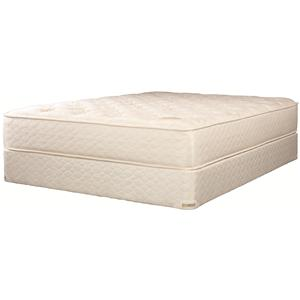 jamison bedding tlc comfort choice queen latex mattress set - Jamison Mattress