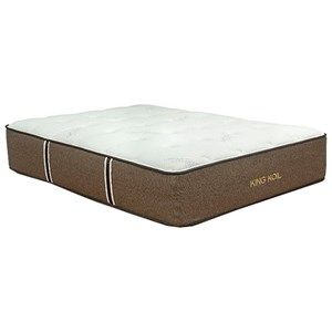 Park Place Corp Jacquelyn Plush King Coil on Coil Plush Mattress