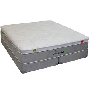 Queen Foam Mattress Set
