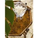 Tommy Bahama Home Island Estate Key Largo End Table - Stationary Tray Top with Cracked Penn Shell Bottom