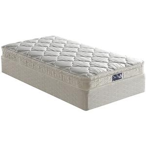 Mattress 1st Appleton Queen Euro Top Mattress