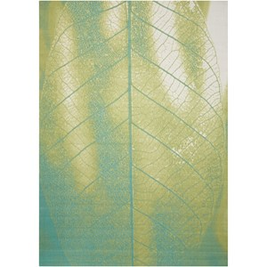 "Nourison Coastal 7'9"" X 10'10"" Green Rug"
