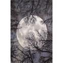 """Nourison Twilight 5'6"""" x 8' Moon Area Rug - Item Number: 33382"""