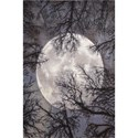 "Nourison Twilight 8'6"" x 11'6"" Moon Area Rug - Item Number: 33383"