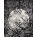 Nourison Twilight1 12' X 15' Moon Rug - Item Number: TWI17 MOON 12X15