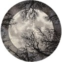 Nourison Twilight1 8' X 8' Moon Rug - Item Number: TWI17 MOON 8X8