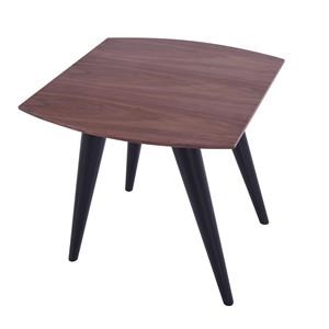 Modern Style End Table