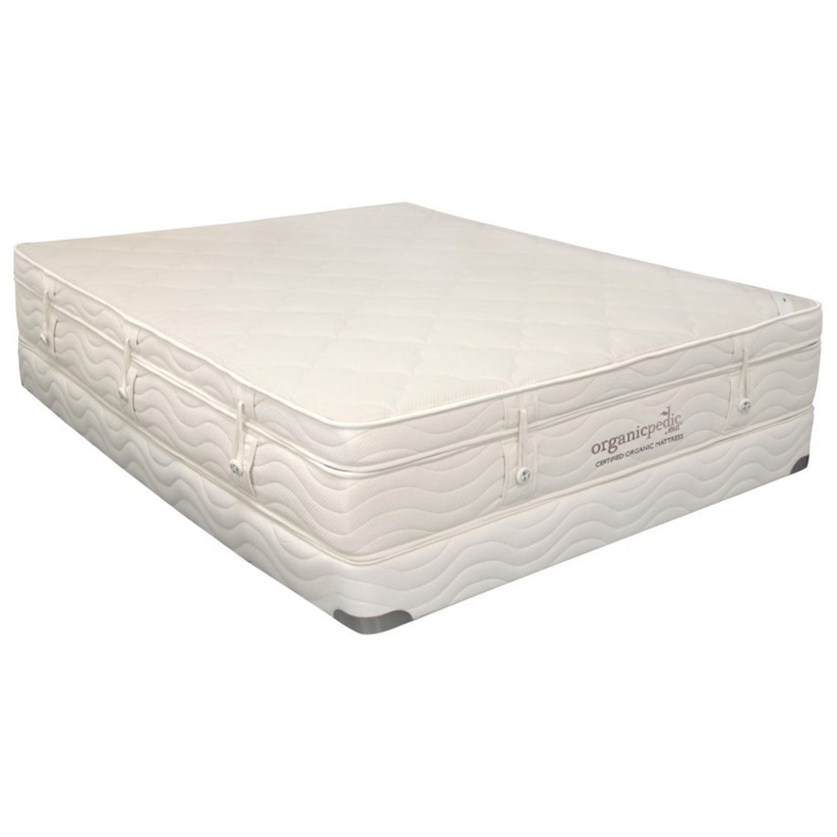 Organic Mattresses, Inc. (OMI) Pinnacle Queen Extra Plush Pillow Top Set - Item Number: 50-PINNACLE-2C9+50WF8-213