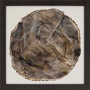Paragon Wall Art Timber II Framed Art