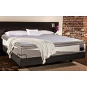 ReST ReST Bed Twin Extra Long ReST Performance Bed - Item Number: ReST-TXL