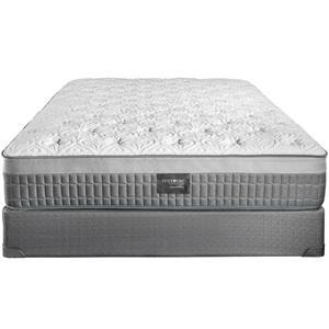Queen Plush Latex Foam Mattress Set
