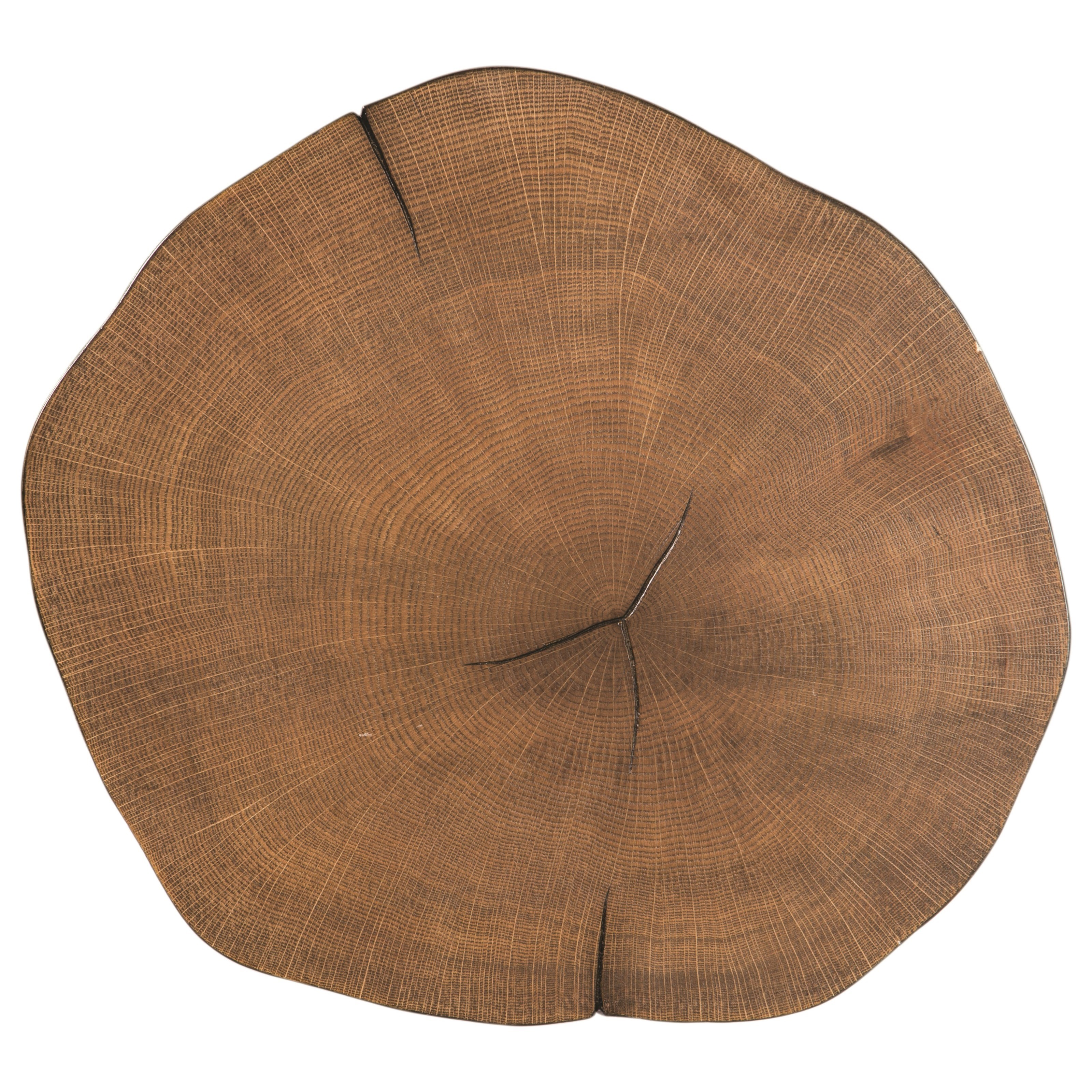 90335 Tree Trunk Slab Accent Table with Metal Legs ...